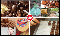 Actifs Reflexes Chocolat 2.png